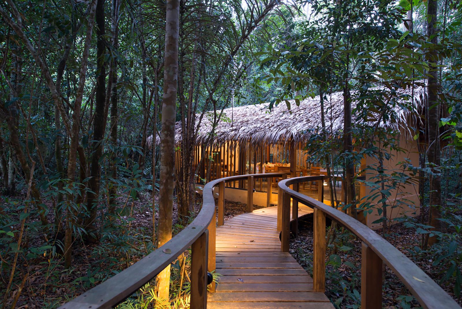 Hotel de Selva 9